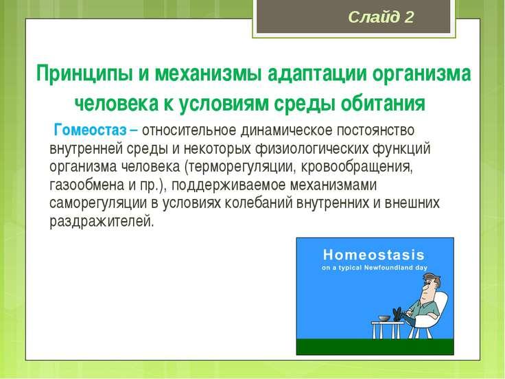 Принципы и механизмы адаптации организма человека к условиям среды обитания Г...