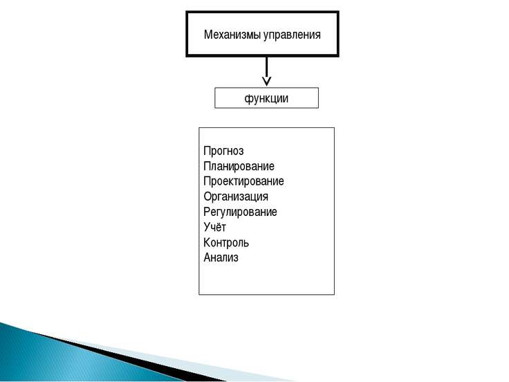 Механизмы управления функции Прогноз Планирование Проектирование Организация ...