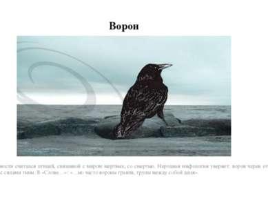 Ворон В древности считался птицей, связанной с миром мертвых, со смертью. Нар...