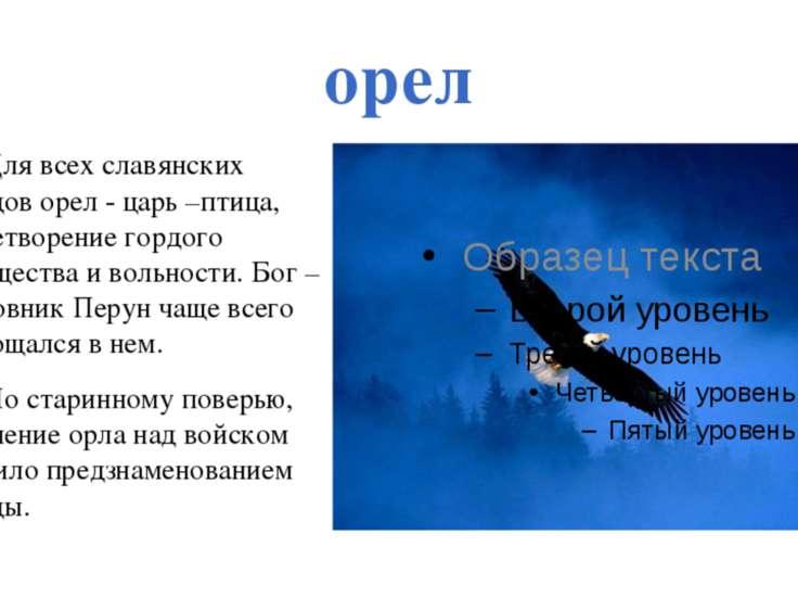 орел Для всех славянских народов орел - царь –птица, олицетворение гордого мо...
