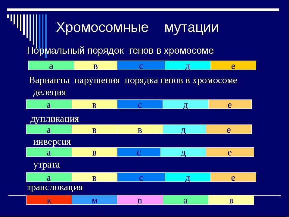 Хромосомные мутации Нормальный порядок генов в хромосоме а в с д е в а в с д ...