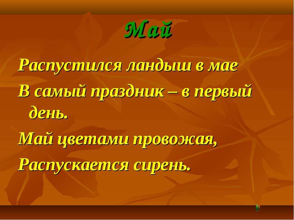 Май Распустился ландыш в мае В самый праздник – в первый день. Май цветами пр...