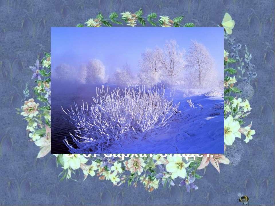 В белом бархате деревня – И заборы и деревья. А как ветер нападёт, Этот барха...