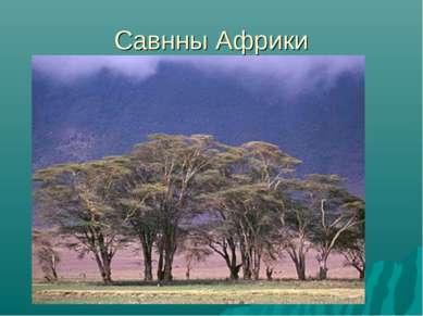 Савнны Африки