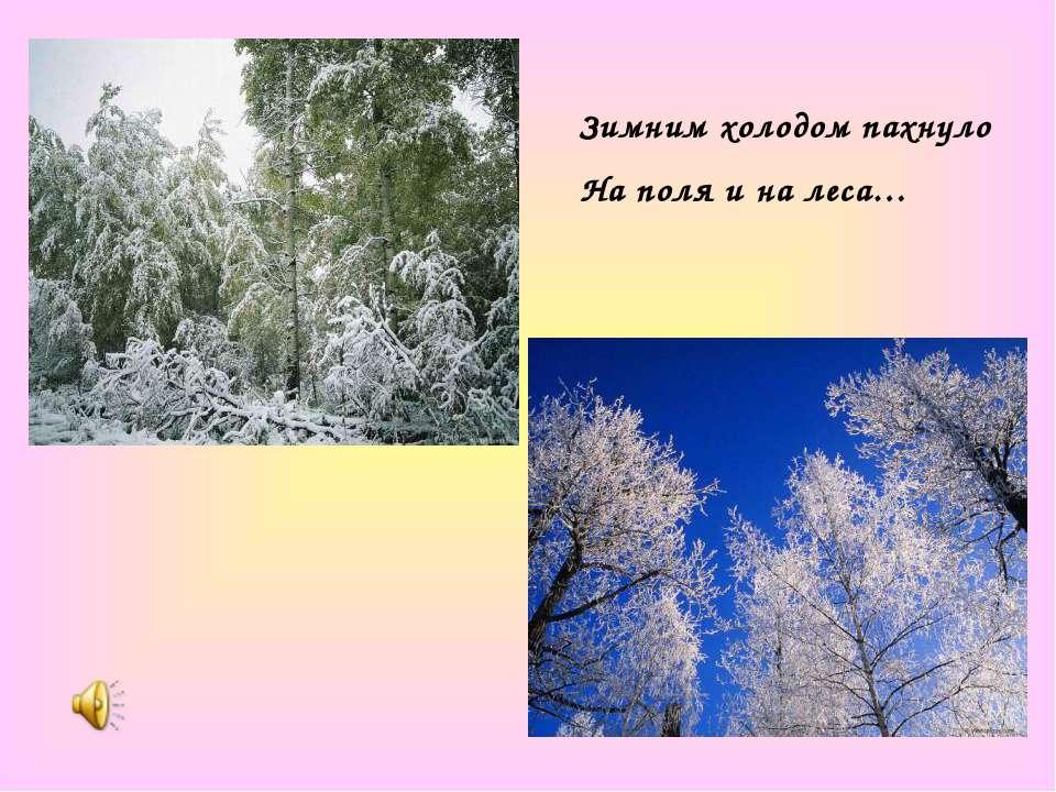 Зимним холодом пахнуло На поля и на леса…