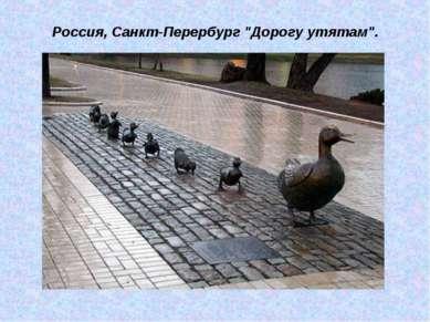 """Россия, Санкт-Перербург """"Дорогу утятам""""."""