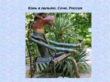 Конь в пальто. Сочи. Россия