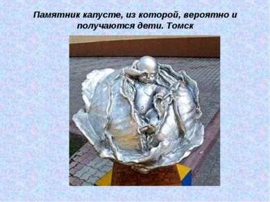 Памятник капусте, из которой, вероятно и получаются дети. Томск