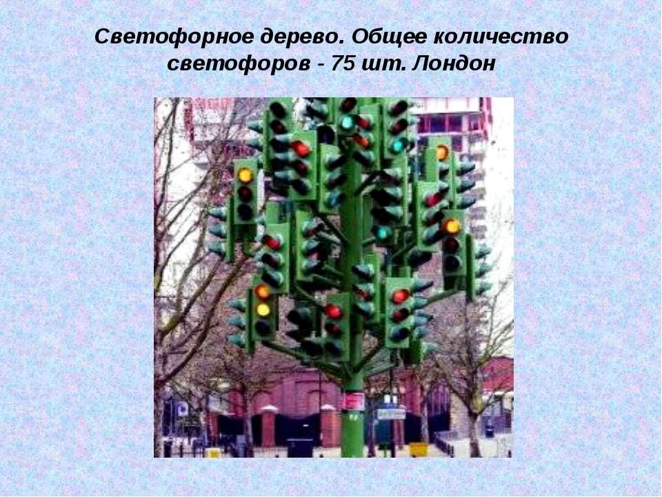 Светофорное дерево. Общее количество светофоров - 75 шт. Лондон