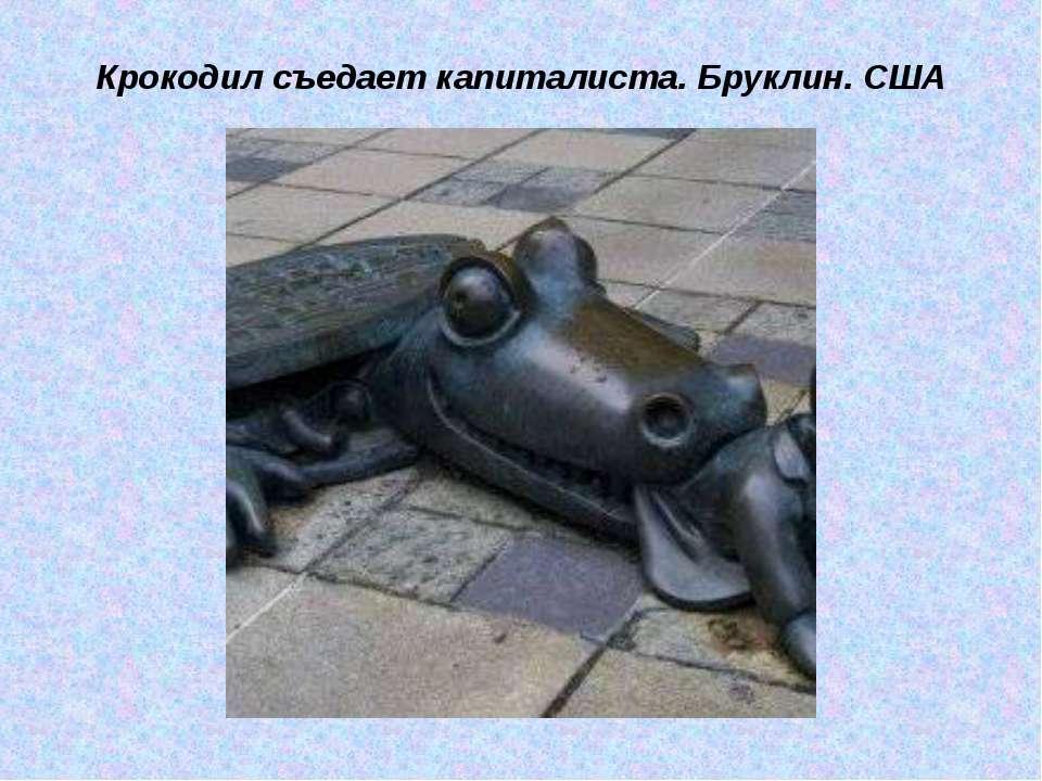 Крокодил съедает капиталиста. Бруклин. США
