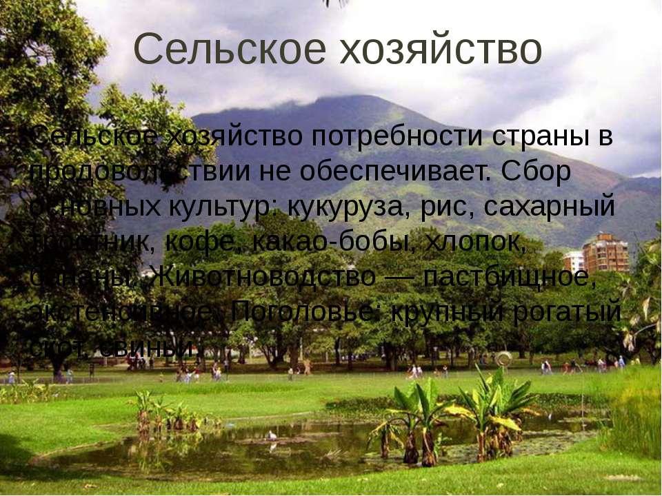 Сельское хозяйство Сельское хозяйство потребности страны в продовольствии не ...