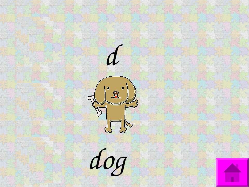 d dog