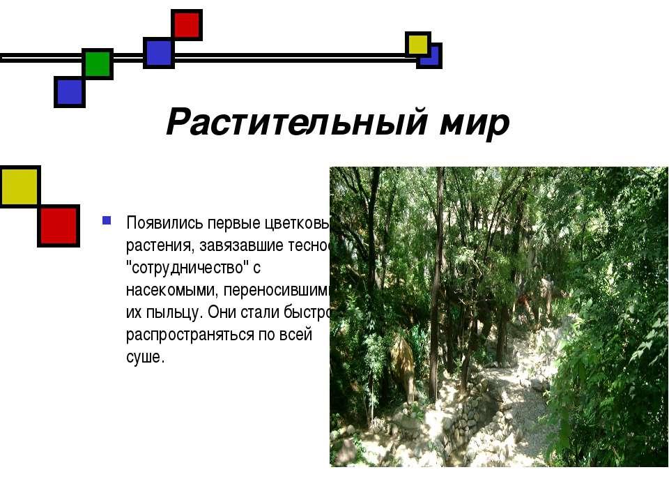 """Растительный мир Появились первые цветковые растения, завязавшие тесное """"сотр..."""