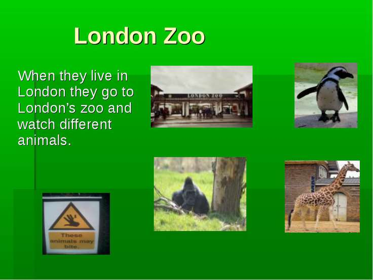 London Zoo When they live in London they go to London's zoo and watch differe...