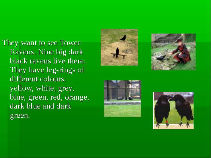They want to see Tower Ravens. Nine big dark black ravens live there. They ha...