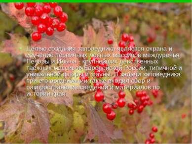 Целью создания заповедника является охрана и изучение первичных лесных массив...