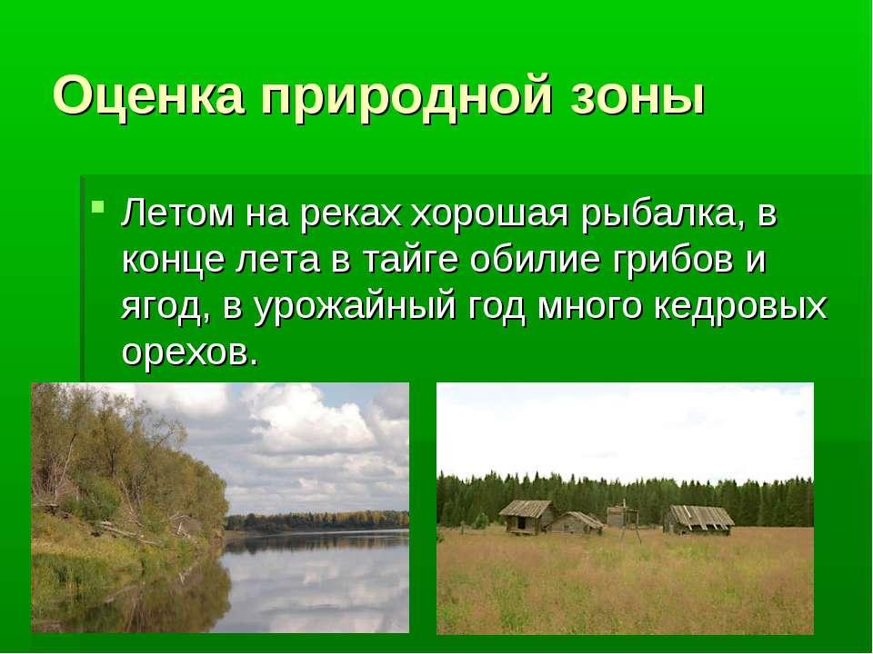 Оценка природной зоны Летом на реках хорошая рыбалка, в конце лета в тайге об...
