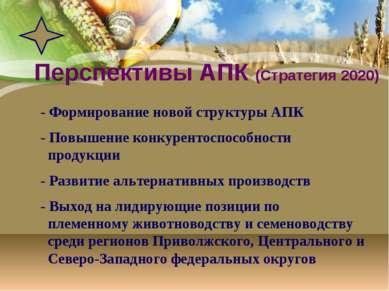 Перспективы АПК (Стратегия 2020) - Формирование новой структуры АПК - Повышен...