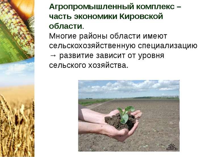 Агропромышленный комплекс – часть экономики Кировской области. Многие районы ...