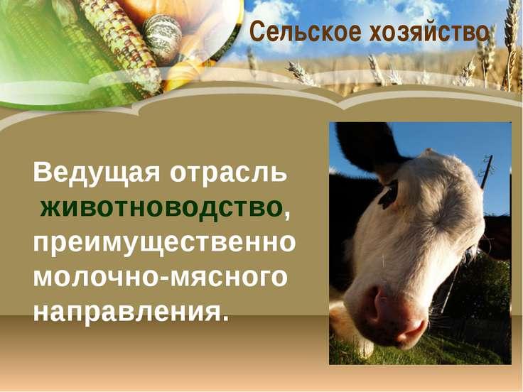 Сельское хозяйство Ведущая отрасль животноводство, преимущественно молочно-мя...