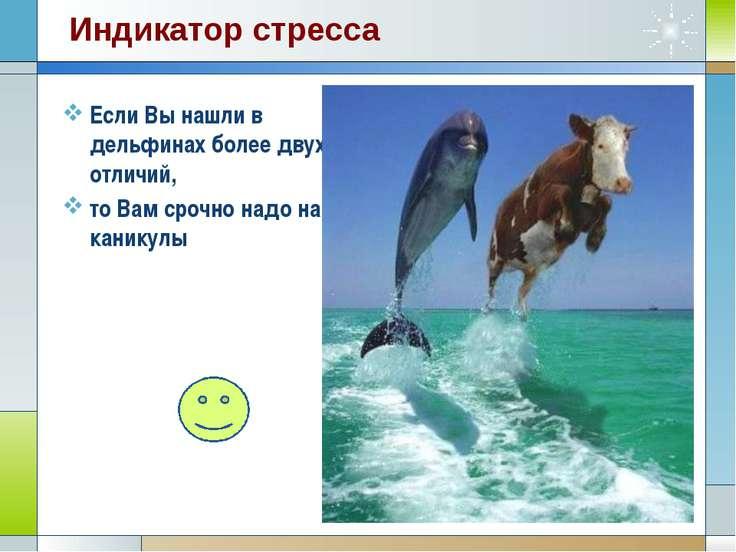 Если Вы нашли в дельфинах более двух отличий, то Вам срочно надо на каникулы ...
