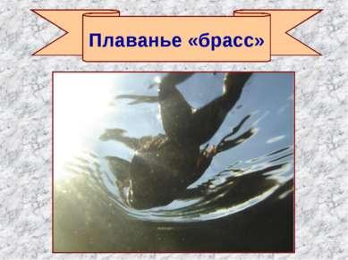 Плаванье «брасс»