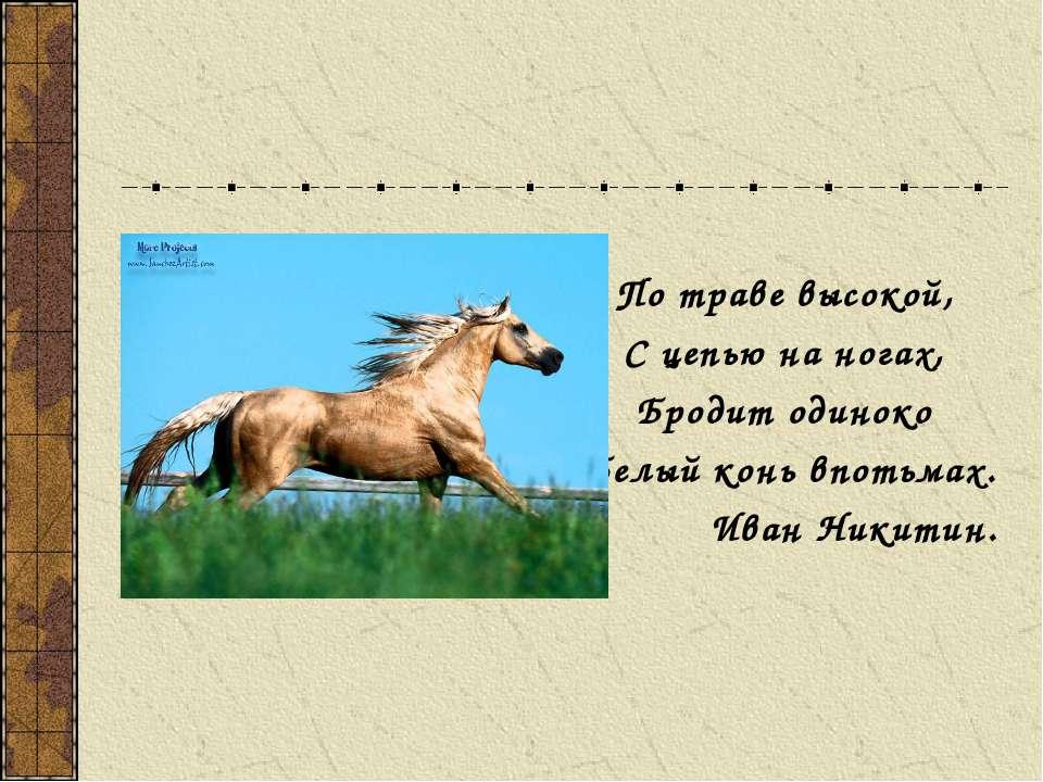 По траве высокой, С цепью на ногах, Бродит одиноко Белый конь впотьмах. Иван ...
