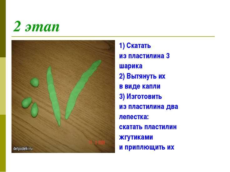 2 этап 1) Скатать из пластилина 3 шарика 2) Вытянуть их в виде капли 3) Изгот...
