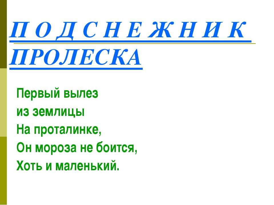 П О Д С Н Е Ж Н И К ПРОЛЕСКА Первый вылез из землицы На проталинке, Он мороза...