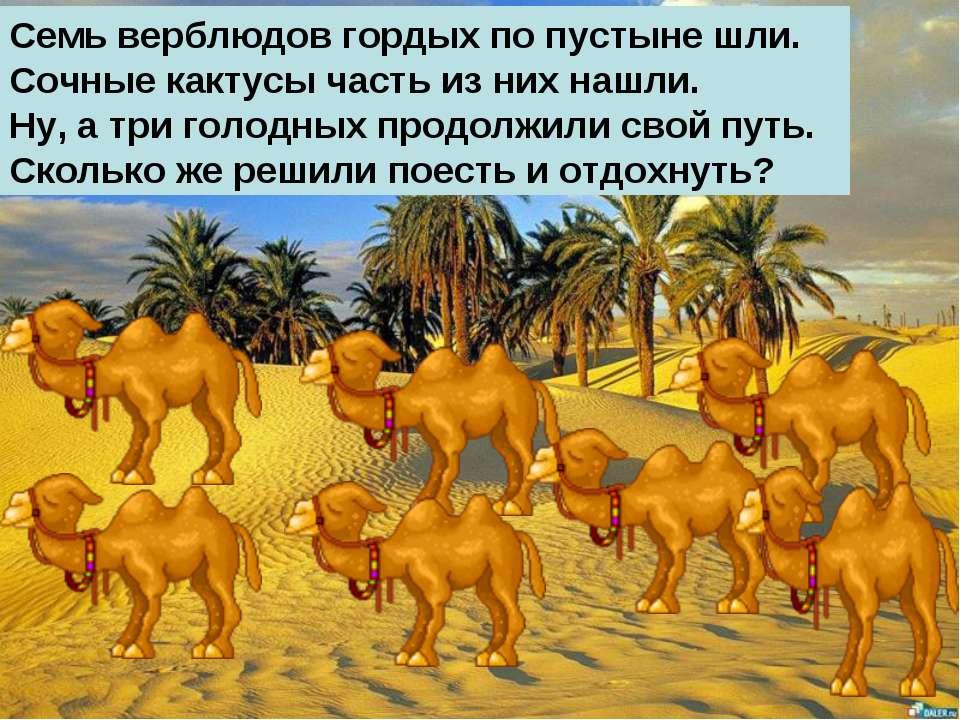 Семь верблюдов гордых по пустыне шли. Сочные кактусы часть из них нашли. Ну, ...