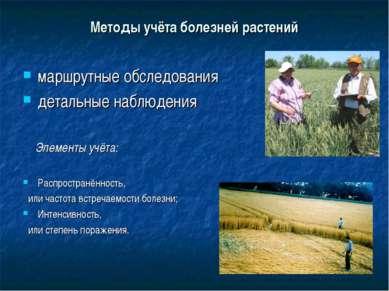 Методы учёта болезней растений маршрутные обследования детальные наблюдения Э...