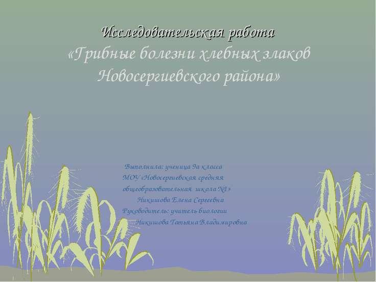 Исследовательская работа «Грибные болезни хлебных злаков Новосергиевского рай...