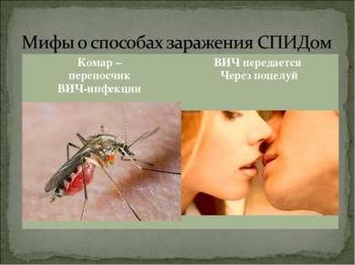 Комар – переносчик ВИЧ-инфекции ВИЧ передается Через поцелуй