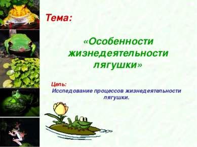 Тема: «Особенности жизнедеятельности лягушки» Цель: Исследование процессов жи...