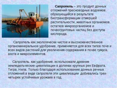 Сапропель – это продукт донных отложений пресноводных водоемов, образующийся ...