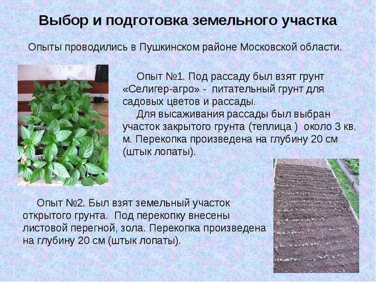 Выбор и подготовка земельного участка Опыты проводились в Пушкинском районе М...