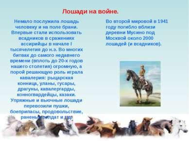 Лошади на войне. Немало послужила лошадь человеку и на поле брани. Впервые ст...