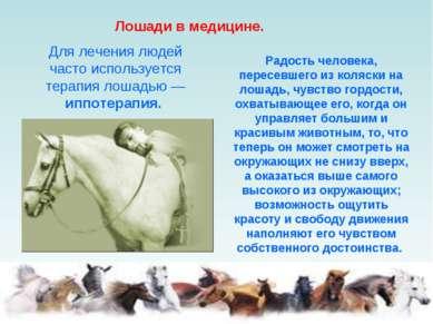 Лошади в медицине. Для лечения людей часто используется терапия лошадью — ипп...