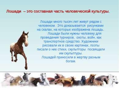 Лошади – это составная часть человеческой культуры. Лошади много тысяч лет жи...