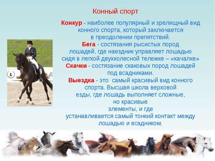 Конкур - наиболее популярный и зрелищный вид конного спорта, который заключае...