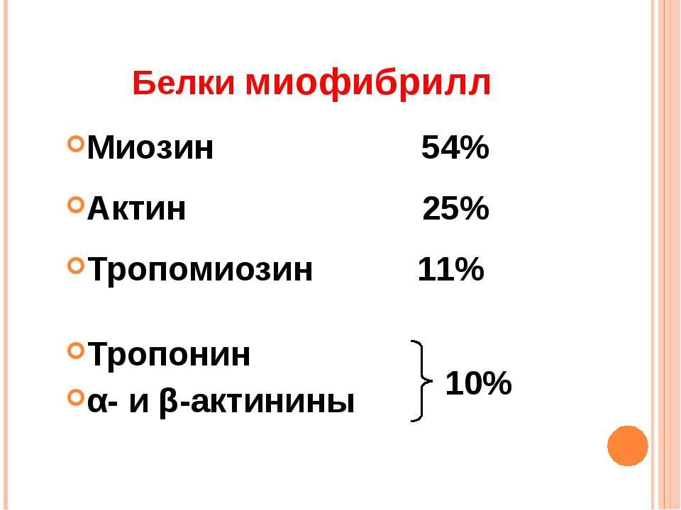 Белки миофибрилл Миозин 54% Актин 25% Тропомиозин 11% Тропонин α- и β-актинин...