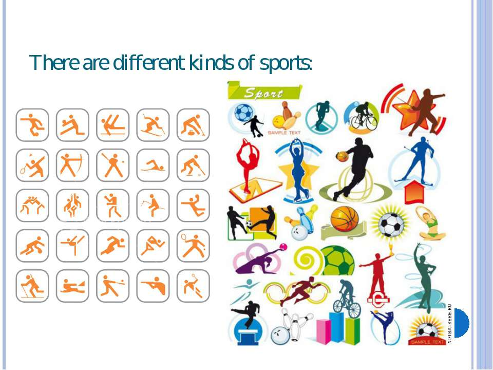 There are different kinds of sports: