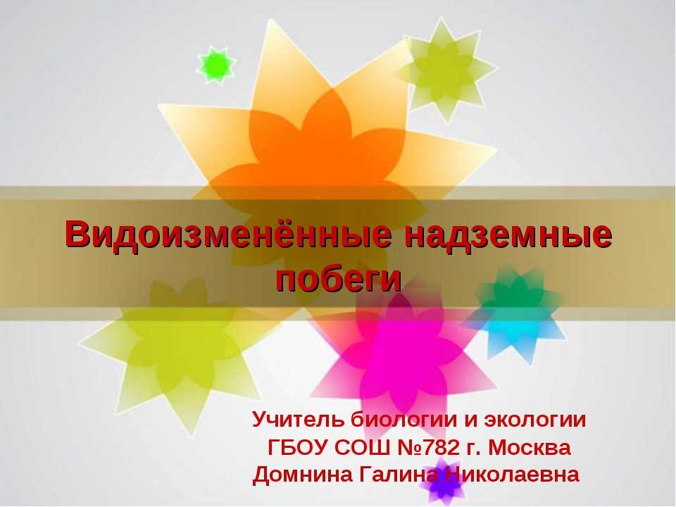 Видоизменённые надземные побеги Учитель биологии и экологии ГБОУ СОШ №782 г. ...