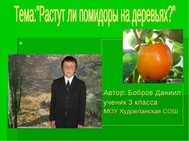 Автор: Бобров Даниил ученик 3 класса МОУ Худоеланская СОШ