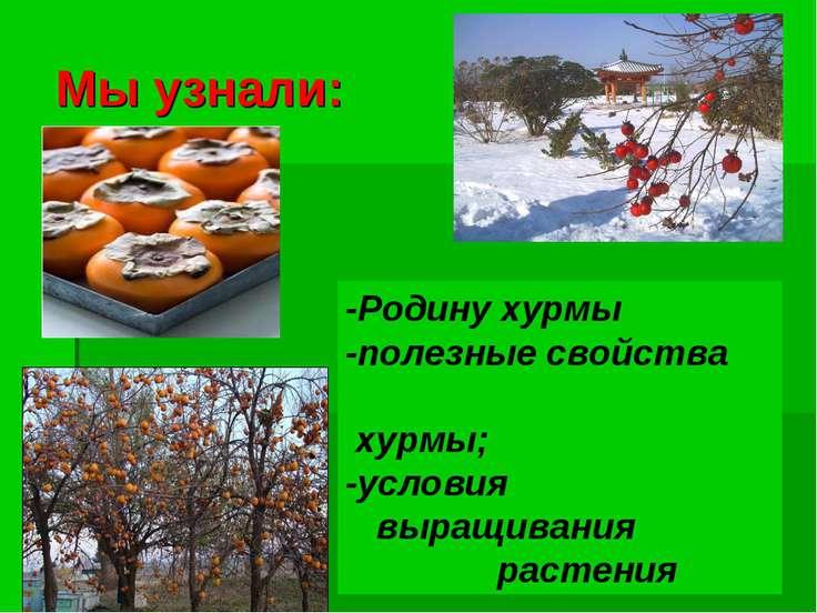 Мы узнали: -Родину хурмы -полезные свойства хурмы; -условия выращивания растения