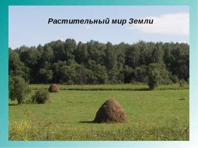 Растительный мир Земли