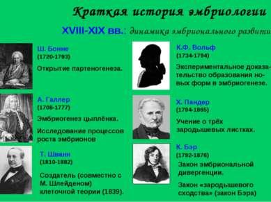 Краткая история эмбриологии XVIII-XIX вв.: динамика эмбрионального развития Э...