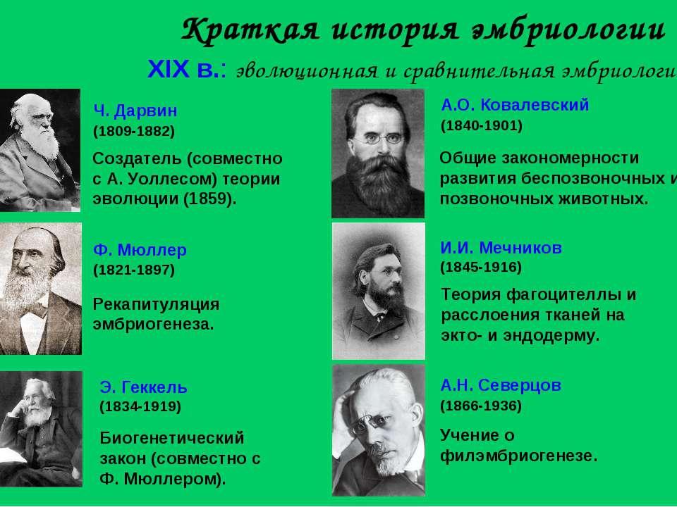 Краткая история эмбриологии XIX в.: эволюционная и сравнительная эмбриология ...