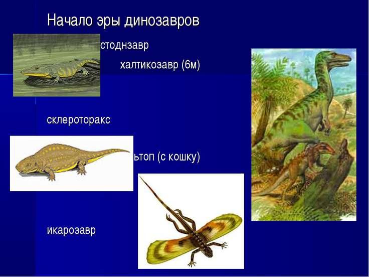 Начало эры динозавров мастоднзавр халтикозавр (6м) склероторакс сальтоп (с ко...