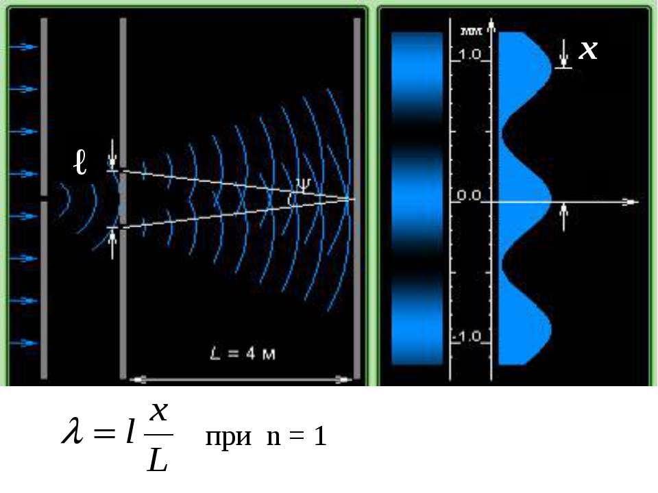 ℓ х при n = 1